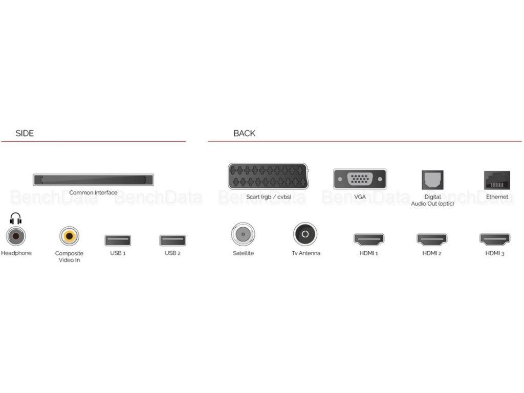 Las conexiones del televisor