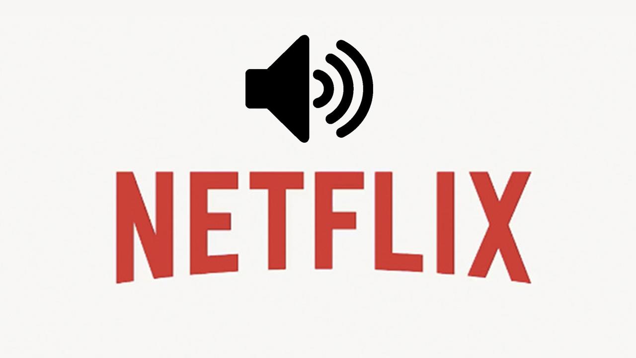 problemas de sonido en Netflix