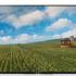 Análisis del televisor Sony KD-55XD8588